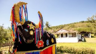 Festival Macuca das Artes terá primeira edição virtual