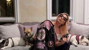 Cachorros de Lady Gaga são roubados