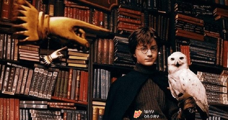 Harry Potter e livros