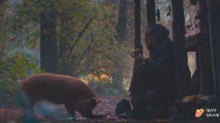 Nicolas Cage está em busca de sua porca no trailer do suspense 'Pig'