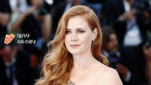 Além de 'Encantada', confira outros filmes com Amy Adams