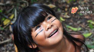Dia da Amazônia: confira filmes ambientados na maior floresta tropical do mundo